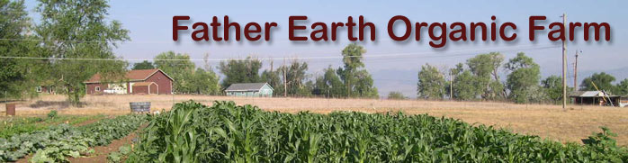 Father Earth Organic Farm